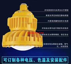 壁装100W防爆灯 车间成品区LED防爆灯 杆式安装100W防爆灯