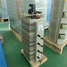 TESGC电动调压器