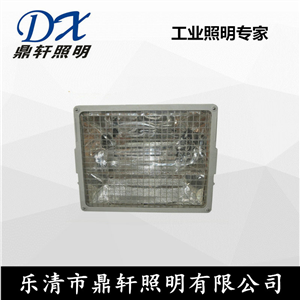 鼎轩照明NTW9270-1000W大功率外场投光灯