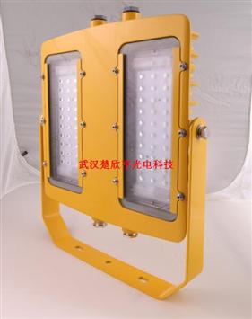 BFC8116 BFC8116-200W  BFC8116LED防爆泛光灯