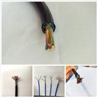 PTY22-56×1.0多芯铁路信号电缆