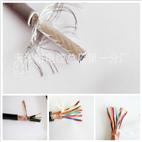 阻燃铁路信号电缆ZR-PTYV