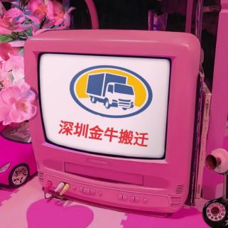 深圳寶安專業搬家搬廠公司 起重吊裝 設備搬運