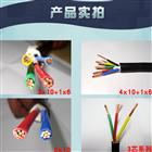 PTYA22铁路信号电缆