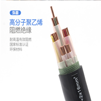国标DJFPV耐高温计算机电缆