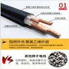 PTYA22-14芯x1.0铠装信号电缆