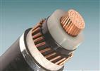礦用鎧裝電力電纜MYJV22