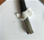 低煙無鹵阻燃屏蔽控製電纜,ZRB-KVVP