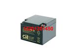 CSB蓄电池EVX12260
