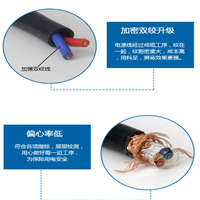 大对数电缆HYA 30×2×0.5