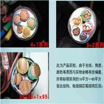 耐油-防腐蚀控制电缆ZR-KF...