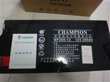 冠军电池NP-12V系列