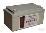 索润森电池SAL系列