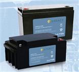 狮克电池LGP-12V系列