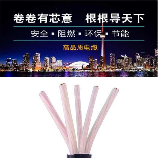 阻燃屏蔽双绞电缆ZR-RVSP价格