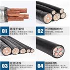 铜芯钢丝锴装阻燃矿用控制电缆MKYJV32