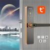 室内智能指纹锁WiFi远程控制指纹房间门锁民宿门锁办公室房门锁(WF-007)