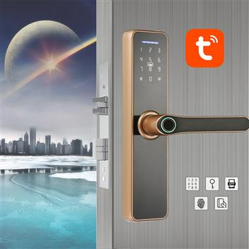 智能指纹密码锁(WiFi远程控制指纹房间门锁民宿门锁办公室房门锁WF-007)
