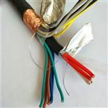 阻燃型屏蔽计算机电缆-ZR-DJYVP