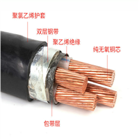 DJYPVP 2*2*1.5计算机电缆