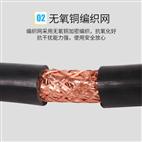 ZR-DJYPVP-7*2*1.0 铜芯阻燃计算机电缆