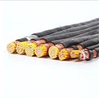 KVVP2-450/750V铠装屏蔽控制电缆