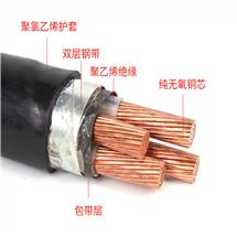 阻燃信号电缆ZR-DJYVP2