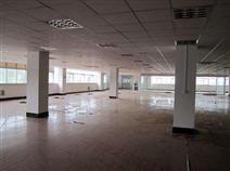承接广东珠海江门厂房装修...