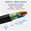DJYVP-计算机电缆DJYVP;DJYPVP电缆;DJYPV电缆