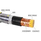 PZYA23 PZY23 PZY22 综合纽绞铁路信号电缆