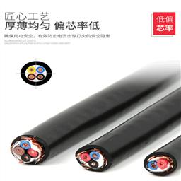 铜网屏蔽电缆型号:RVVPS RVVSP ZR-RVVPS
