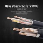 RVVY电缆 RVVY电缆--报价
