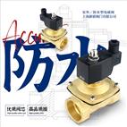 2WS塑封銅電磁閥防水型