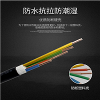 主传输信号电缆MHYBV 主传输信号电缆MHYBV