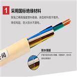 ZA-RVV22通信用阻燃软电缆10平方16平方