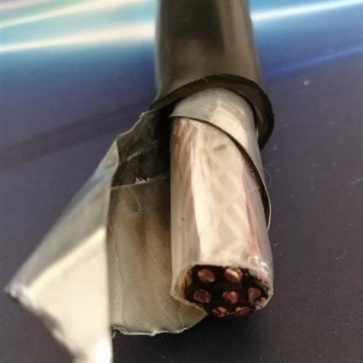 YC橡套电缆10×2.5