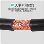 计算机铝箔屏蔽电缆DJYVP