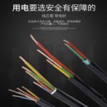 铜箔屏障节制电缆MKVVP2 (图)