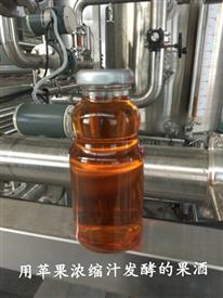 福源天成--純釀造蘋果酒