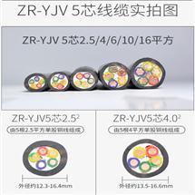 ZR-HYVP通信用广播线 ZR-HYVP 100×2×0.5报价