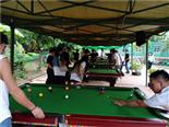 桌球-万荔生态园休闲项目