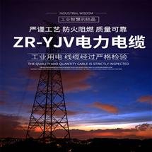 MHYVRP-矿用监控电缆-MHYVRP系列