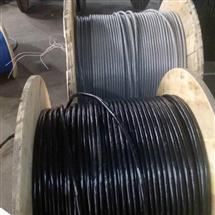 阻燃通信电缆ZRHYA ZRCHYA