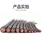 钢带铠装信号电缆-PTYA23专业厂家