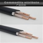 低烟无卤阻燃控制电缆WDZ-KVV