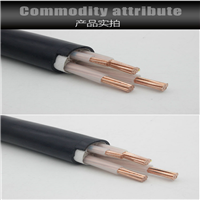 RVVSP电缆