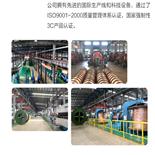 煤矿用通讯电缆 MHYAV (5-100对)