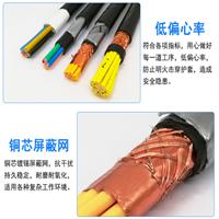 计算机电缆 ZR DJYVP 10*2*1.0