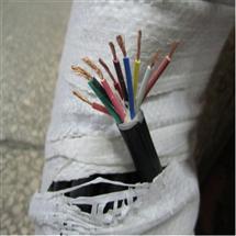 计算机用屏蔽电缆、DJYVP3