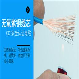 通信电缆HYV-100×2×0.7㎜
